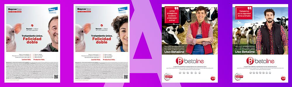 Feminización y publicidad veterinaria